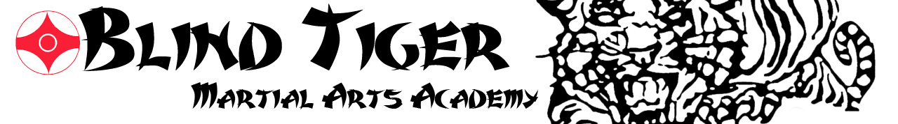 Blind Tiger Martial Arts Academy